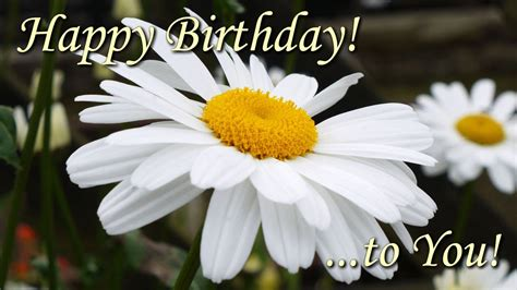 Happy Birthday To You - beautiful flowers pictures with
